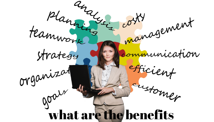 manfaat membangun aplikasi bisnis